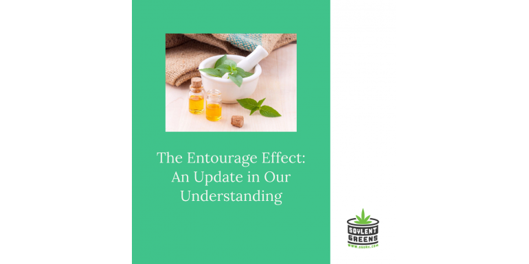 The Entourage Effect: An Update in our Understanding